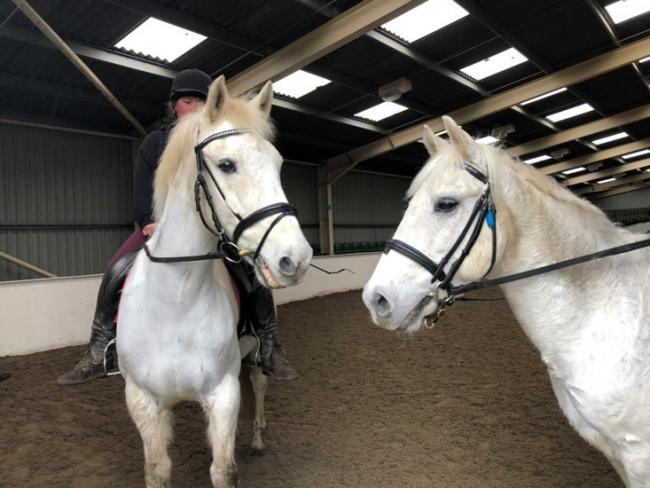 Penniwells Riding Centre provides support for disabled adults and children