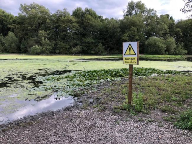 The reservoir has turned green and people have reported it smells. Credit: David Buckland.