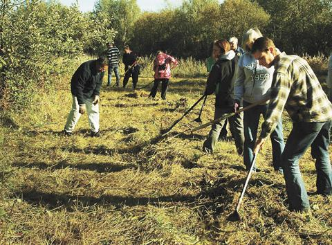 Borehamwood Times: Green Gym volunteers demonstrate teamwork in clearing meadows in Colne River Park
