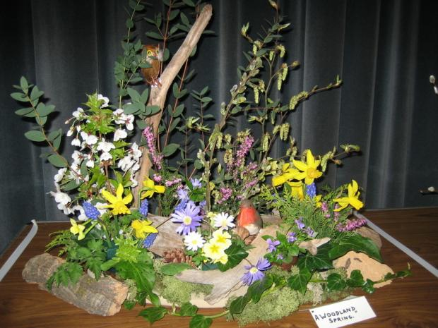 An exhibit from Borehamwood & District Garden Society's spring show