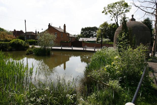 Councillor's grant makes a splash at Shenley Pond
