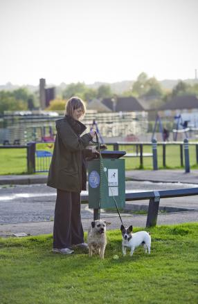 Pick up after your pets, dog owners warned