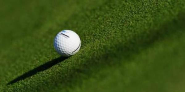 Hertsmere Mencap, which was founded in 1964, is marking the historic occasion by organising a community golf day.
