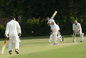 Keen cricketers and spectators are needed to take part in a community cricket day.
