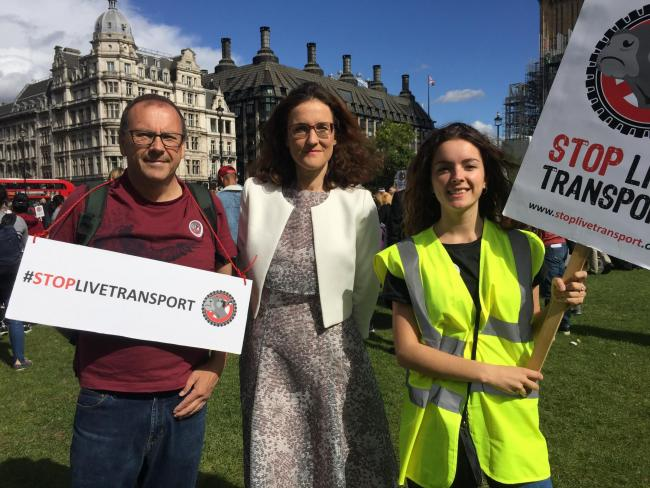 Image result for theresa villiers ban live exports