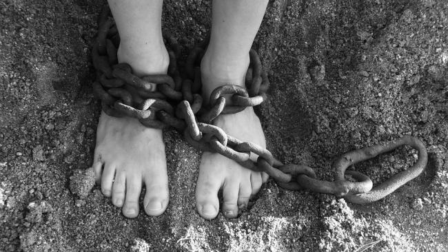 Councillors will look at modern slavery